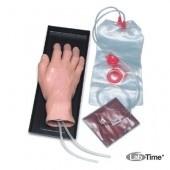 Тренажер для внутривенных инъекций, кисть