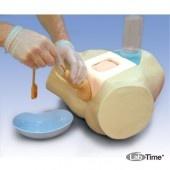 Тренажер для уретральной и надлобковой катетеризации мужчины