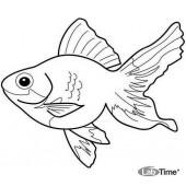 Мини-лаборатория «Рыбовод» для рыбоводческих хозяйств