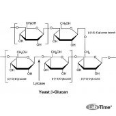 Литиказа, Arthrobacter luteus, лиофилизированый порошок, ≥2,000 ед/мг белка, Protein ≥20% by biuret,