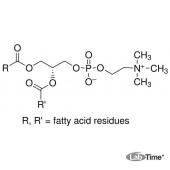 Лецитин из сои, мин. 90%, 100 г (AppliChem)