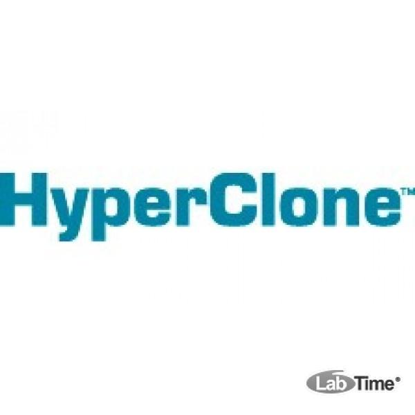 Колонка HyperClone 5 мкм, BDS C18, 130A, 125 x 4.0 мм