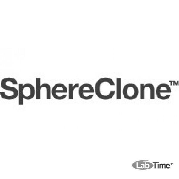 Колонка SphereClone 3 мкм, C8, 80A, 125 x 4.0 мм